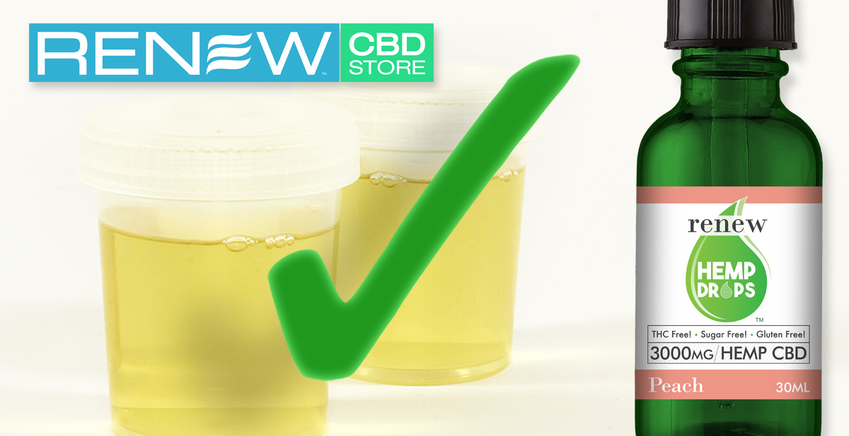 Will I pass a drug test while taking CBD?